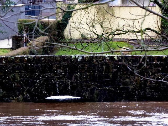High water level at Cranny footbridge