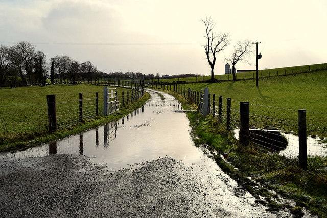 Flooded lane, Donaghanie