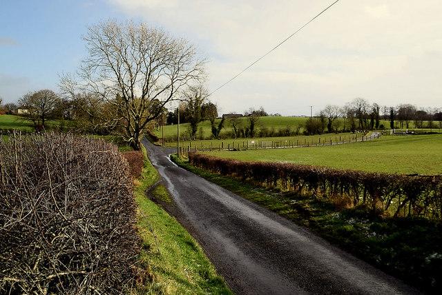 Dryarch Road, Donaghanie