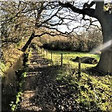 TQ2115 : Henfield, Sussex - footpath along the bottom of Spring Hill by Ian Cunliffe