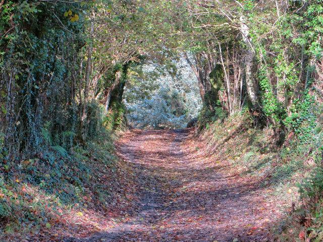 Hen wtra / Old lane