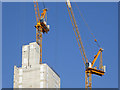 SP0687 : Tower block with cranes, Birmingham by Roger  Kidd