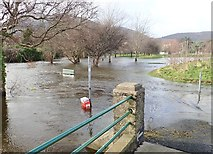 J3731 : Flooding in Islands Park by Eric Jones