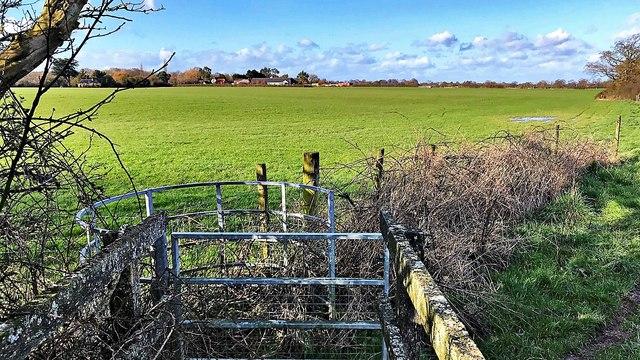 Gate on the footpath NE of Huddlestone Wood