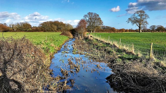 Crossing the ditch/stream north of Huddlestone Wood