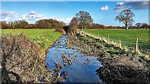 TQ1814 : Crossing the ditch/stream north of Huddlestone Wood by Ian Cunliffe