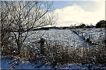 H5559 : Wintry at Garvaghy by Kenneth  Allen