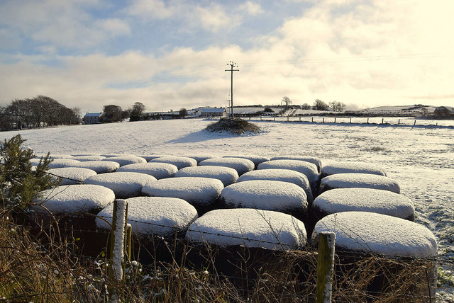 Snow capped bales, Garvaghy