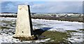 SK2597 : Trig Point near Stocksbridge by Dave Pickersgill