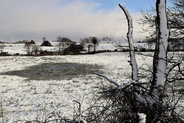 Wet spot in field, Tycanny