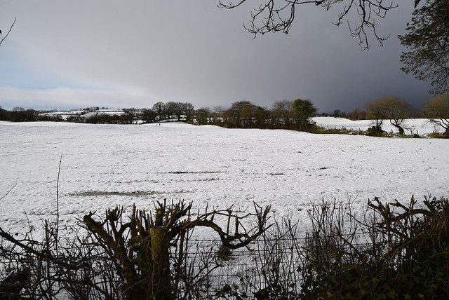 Snow covered fields, Tycanny