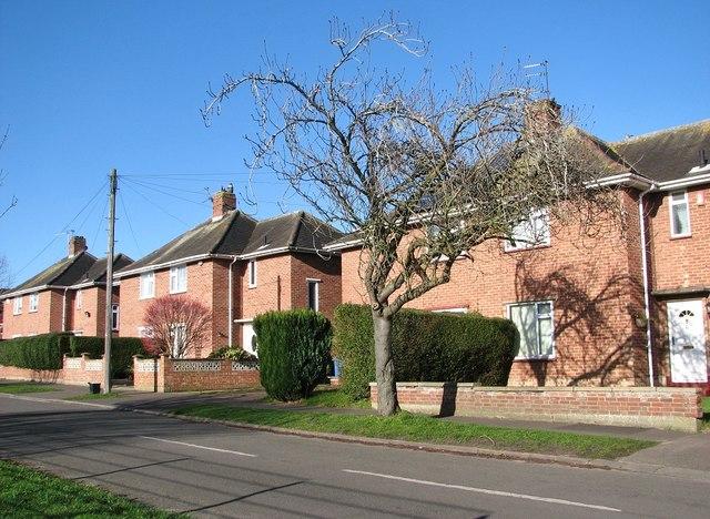 Houses in Greenwood Road