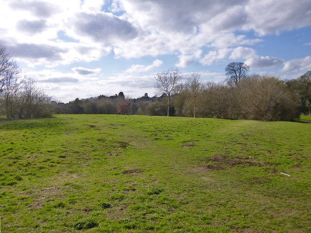Open space - old ridge and furrow field