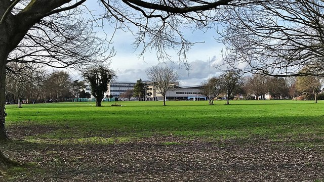 Chichester College and grounds