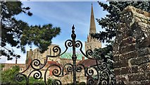 SU8504 : Chichester Cathedral - from Bishop's Palace Garden by Ian Cunliffe