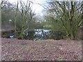 SU6086 : The old pond by Bill Nicholls