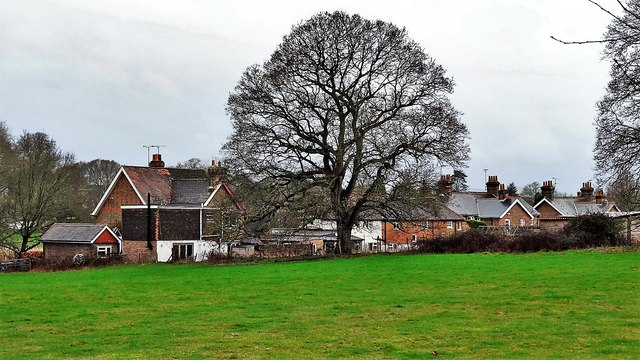 Rear view of houses on Henfield Common