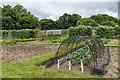 SS6140 : Walled garden by Ian Capper