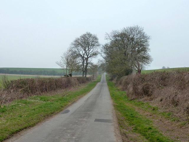 Newton Lane towards Barton Stacey