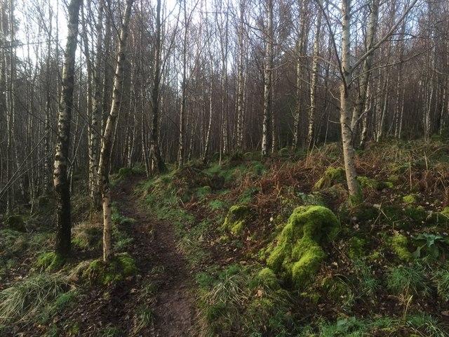 Path, Black Hill