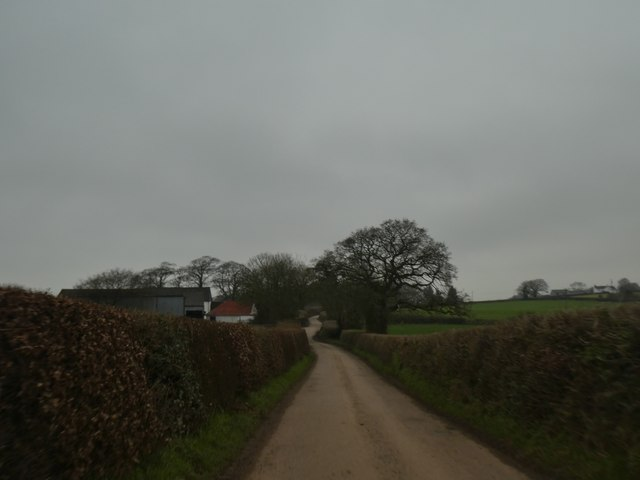 Buildings and trees at Pulsfordware