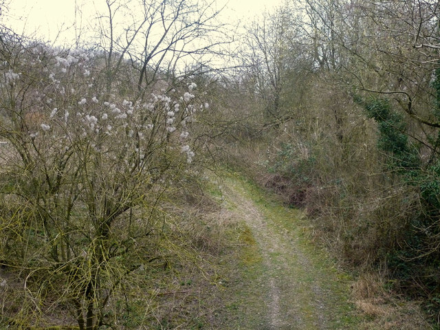 Track of old railway, almost