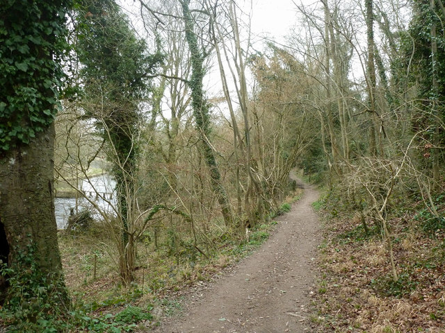 Path along wooded bank above River Anton