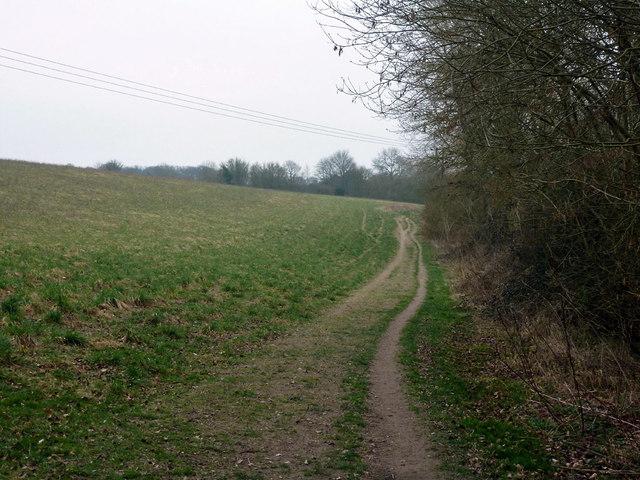 Path along field edge above River Anton