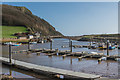 SY2589 : Axmouth Harbour by Ian Capper