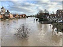 SK7954 : River Trent in flood in Newark by Andrew Abbott