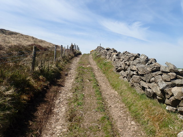 Larry Tam's Loanan ascending Westwards on the lower slopes of Anglesey Mountain