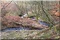 NT2247 : Bend in the Fairydean Burn by Jim Barton