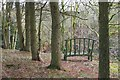 NT2347 : Rustic seat above the Fairydean Burn by Jim Barton