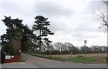 TQ5885 : Ockenden Road, North Ockenden by David Howard