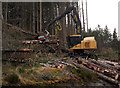 NH4937 : Timber harvesting, Boblainy Forest by Craig Wallace