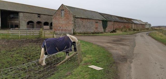 West Goswick Farm