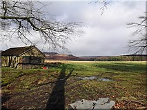 SK2579 : The Edge of Granby Wood by Stephen Ostler