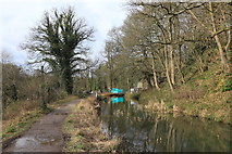 SK3155 : Cromford Canal by Andrew Abbott