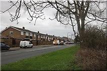 TQ5185 : Upper Rainham Road, Elm Park by David Howard