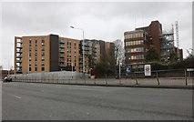 TQ5187 : Blocks on Hornchurch Road, Rush Green by David Howard