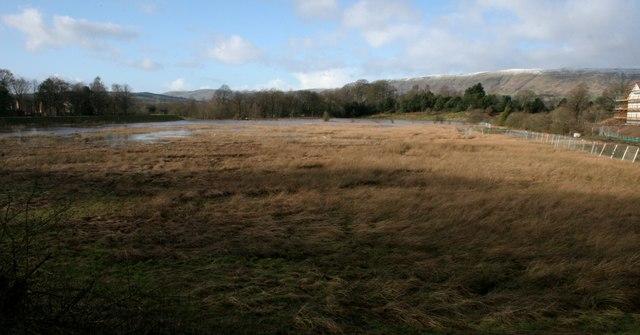 A bit of flood plain