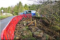NJ1461 : Repairing the Dyke by Anne Burgess