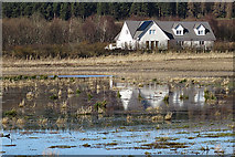 NJ1561 : Reflected Gables by Anne Burgess