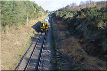 NJ1161 : Railway to Aberdeen by Anne Burgess