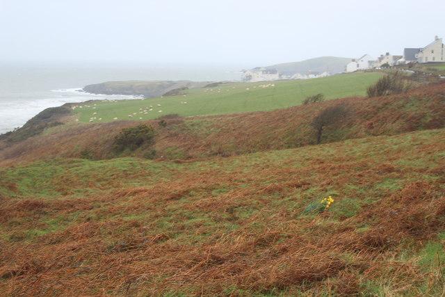 Shoreline of Teifi Estuary at Gwbert
