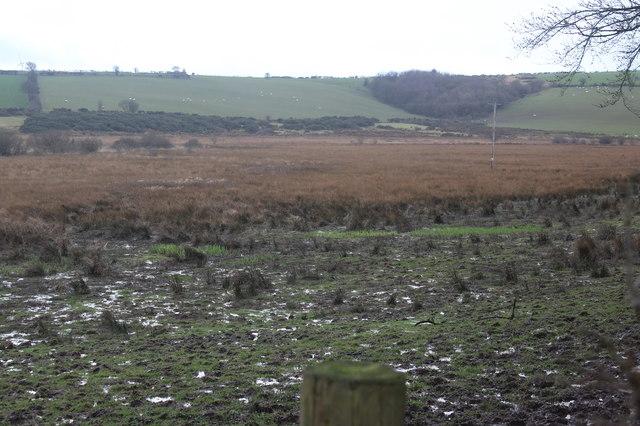 Rough pasture, Corsgoch