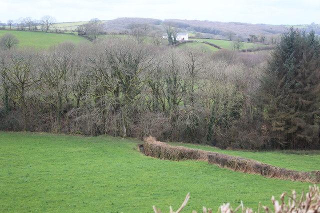 Field, Bryn Eiddig