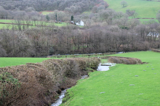 Tributary of Afon Cothi, near Frongoch