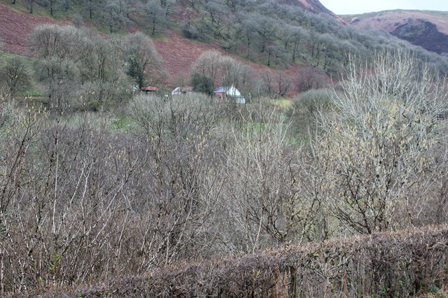 View across valley to Llys Bedw