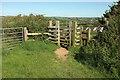 SS2005 : Gate near Lynstone by Derek Harper